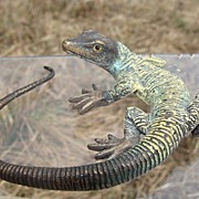 Antique Vienna Bronze of a lizard dated at the 19th century