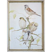 SOLD Water color painting depicting a group of birds, ca.1920