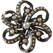 Small Victorian Sterling & Seed Pearl Pin