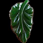 Deeply Carved Translucent Green Bakelite Leaf Pin