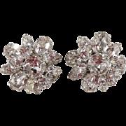 SALE Schreiner Clear Rhinestone Flower Earrings