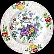 SALE Early Pearlware Plate ~ ORNITHOLOGY Bird Bug Flowers c1810
