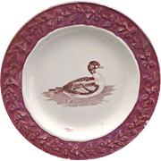 SALE 19thc Creamware Childs Plate DUCK Pink Lustre Moulded Rim Staffordshire Transfer