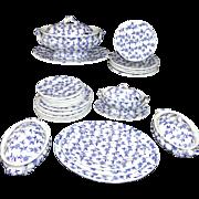 SALE 30-piece Childs Ironstone COBALT BLUE Transferware Dinner Set DAISY CHAIN Ridgway ...