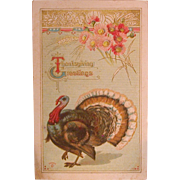 "Thanksgiving Turkey Postcard, Marked ""P SANDER"", C. 1911-12"