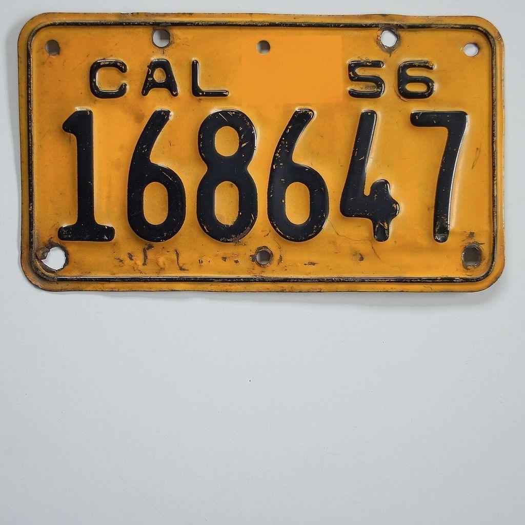 Vintage Licence Plate 113