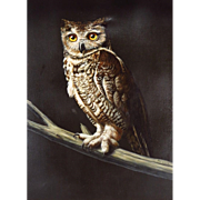 Oil Painting - Portrait of a Great Horned Owl by Photo Realism Painter Arne Charles Besser ...