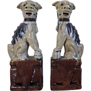 Pair Antique 19th century Chinese Porcelain Foo Dogs