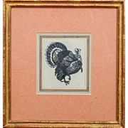 Drawing of an American Turkey Ink and Gouache on Paper in French Mat & Carved Gilt ...