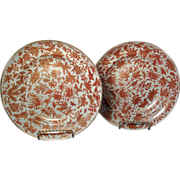 Pair early 19th c. Chinese Export Porcelain Plates in the Sacred Bird and Butterfly Pattern