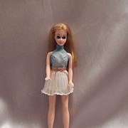 Dawn Fashion Doll By Topper