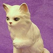 Vintage Long Coated Sitting Kitten ~ Cat