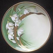 "Tirschenreuth (Bavarian) 8 3/4"" Display Plate, Beautiful Background Transfer of Gladiolas"