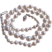 SALE Vintage Ruby Set Clasp Very Fine Akoya Graduated Cultured Pearl Necklace with Certified .