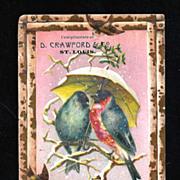 SOLD c1895 Saint Louis Victorian Advertising Trade Card Album Scrap - D. Crawford & Company De
