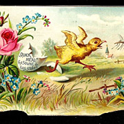 SALE c1890 - Easter Baby Chick Album Scrap – Easter Egg Shell – Mosquito - Quick Meal Gas