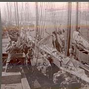 Rare c1920 Boston Fishing  Fleet  Real Photo Stereo View - Sailing Ship Unloading Catch at ...