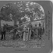 SOLD 1890's RARE African American Stereo View - Georgia Sharecroppers Grinding Sugar Cane -:Ji