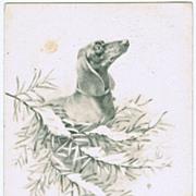 Dachshund on vintage Christmas Postcard 1906