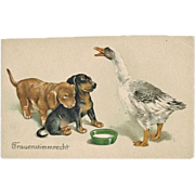 SOLD Vintage postcard with Dogs and Goose