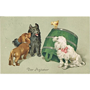 Cute vintage Postcard with Dogs and Chicken