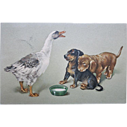 Sausage Dog and Goose. Vintage postcard from 1916