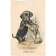 Decorative Lithographed Easter Postcard with Dachshund M. M. Vienne