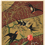 Japanese vintage Postcard with Birds and Flowers. 1907