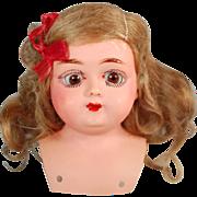 Antique German celluloid doll shoulderhead turtle mark sleep eyes original wig Rheinische Gumm