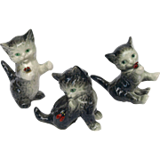 Three Goebel kittens playful green eyed kitty cats with lady bugs smoky grey with white ...