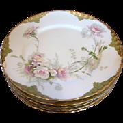 French Haviland Limoges Set 5 Dinner Plates w Large Pink & White Roses c 1903