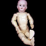 Large Heinrich Handwerck Project Doll