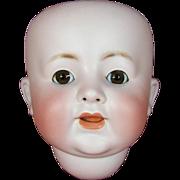 Antique German Bisque Doll Head - ABG Mold # 1361