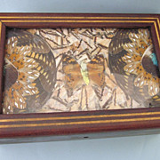 SOLD Vintage Brazilian butterfly Wing Inlaid Wood Box