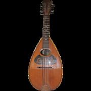 Bowl Back Mandolin