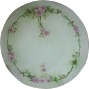 Limoges plate, hand painted beauty!