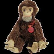 Schuco Tricky US Zone Germany Chimpanzee Yes No
