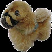 Cute Small Mohair Steiff Dog Pekingese