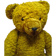 Huge and Lovable 37 Inch Fully Jointed Golden Vintage Bear with Growler (works), Glass Eyes, F