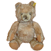SALE 15 Inch Steiff Teddy Bear, Carmel Colored, Silver Button, Ear Tag