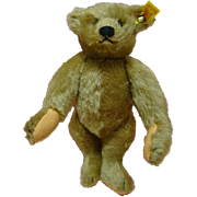 SALE 9  In. Steiff Mohair Remake of the 1904 Original Teddy for Strong Museum