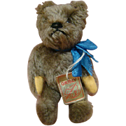 """SALE 6 Inch Tagged """"Grisly"""" Bear, West Germany, Fully Jtd, Excellent"""
