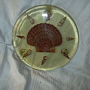 Old Lucite Trivet With Shells