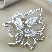 SALE Beautifully Detailed Emmons Silver-Tone Leaf Pin
