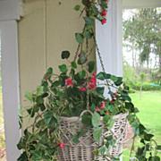 SALE Wicker Hanging Flower Basket