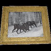 SALE Rare Antique Winter Scene Moose Print Circa 1902