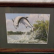 SALE Jumping Tarpon Maynard Reece Framed Print in Color 50% Off