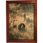 SALE A Covey Find, Vintage Fine Art  Framed Hunting Dog Print, Percival Leonard Rosseau, Artis