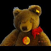 Stieff  Brown Bear