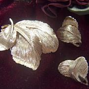 SALE Vintage signed Valenza Demi Golden Toned Triple Leaf Pin Brooch & Clip Earrings